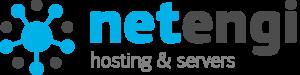 netengi.com